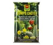 Compo Kaktusy 5 L