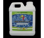 Aqua Biocyd G-1/R przeciw glonom w basenach 2L